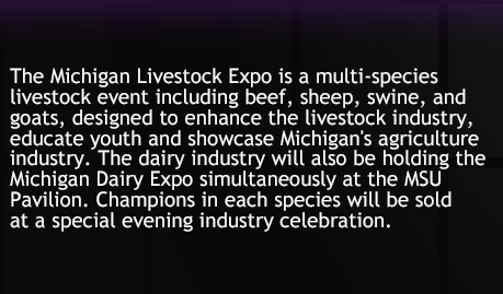 Michigan Livestock Expo